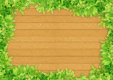 Green leaves on wood Stock Image