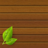 Green leaves on wood Stock Photos