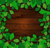 Green leaves on wood background Stock Photography