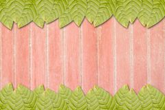 Green leaves on wooden plank Stock Photo