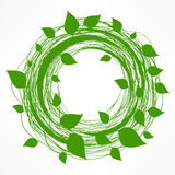 Green leaves wreath Royalty Free Stock Photography