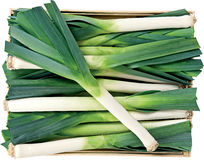 Green leek in a box background Stock Photos