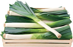 Green leek in a box background Royalty Free Stock Image