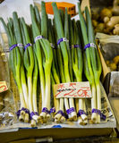 Green leek in market Stock Photography