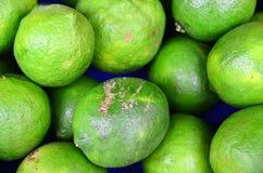 Green Lemon Royalty Free Stock Image