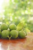 Green lemon Royalty Free Stock Photography