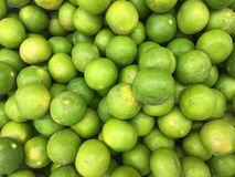 Green lemon. Royalty Free Stock Images