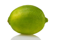 green lemon (lat. Citrus) Stock Photos