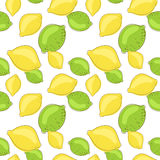 Green lemon and lime fruits on white background Stock Photos