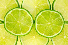 Green lemon slices. Stock Photo