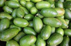 Green lemon Stock Photography