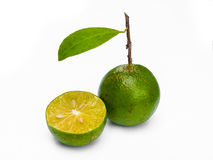 Green  lemon. A  two green  lemon on white background Royalty Free Stock Photography