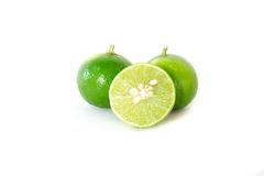 Green lemon Stock Image