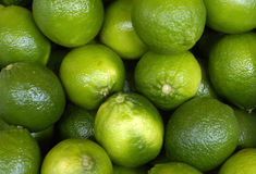 Green lemons Royalty Free Stock Photography