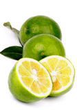 Green Lemons Stock Photography