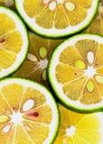 Green Lemons Background Stock Images