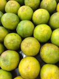 Green Lemons Royalty Free Stock Photos