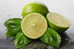 Green lemons with  fresh mint leaves Royalty Free Stock Images