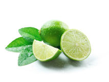Green lemons with leaves. On white background royalty free stock image