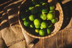 Green lemons Royalty Free Stock Photography