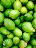 Green lemons. Set of many lemons in Colors royalty free stock photos