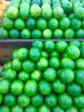 Green lemons Stock Image