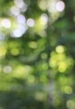 Green Lens Bokeh Background Stock Image