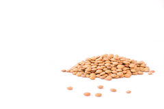 Green lentil Royalty Free Stock Images
