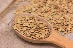 Green lentil Stock Photography