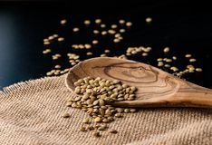 Lentil seeds in a wooden spoon Stock Photo