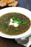 Green Lentil Soup with Watercress Royalty Free Stock Photography