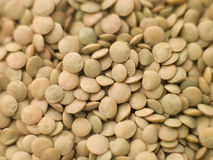 Green Lentils Stock Photo