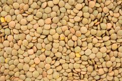 Green lentils background Stock Image