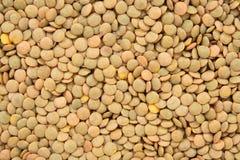 Green lentils background Stock Image