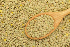 Free Green Lentils Background Stock Photography - 9932512