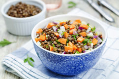 Green lentils carrots celery salad royalty free stock photo