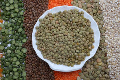 Green lentils Stock Image