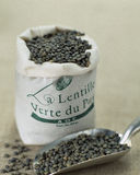 Green lentils from The Puy. Food, gastronomy, cooking,cookery Stock Image