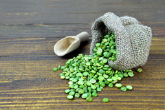 Green lentils in sack Royalty Free Stock Image