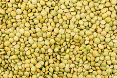 Green lentils texture Royalty Free Stock Images
