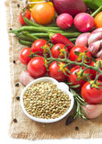 Green lentils and vegetables Royalty Free Stock Photos