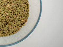 Green lentils, on the white Background. Beautiful green lentils with pyrex Stock Photography