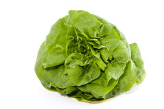 A green lettuce. Isolated over white stock images
