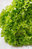 Green lettuce. Fresh healthy lettuce full of minerals and vitamins Royalty Free Stock Photography