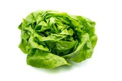 Green lettuce isolated on white background stock photo