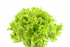 Free Green Lettuce Leaf Royalty Free Stock Image - 30515896