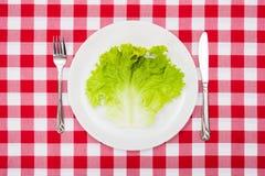 Green lettuce leaf on white plate Stock Photo