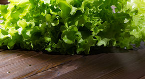 Green lettuce leaves with water drops on the brown boards. Horizontal shot Royalty Free Stock Image