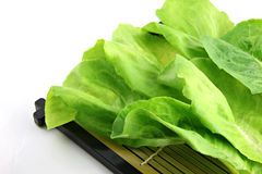 Green lettuce placed in the dish. Royalty Free Stock Photos