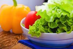Green lettuce salad Stock Photo